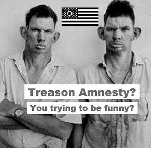 American Nazi treason amnesty 490