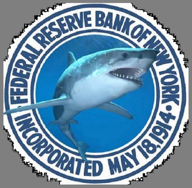 Grey US Fed loan-shark-cropped