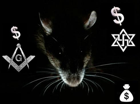 Rough rat-nazi-mason-dollars 490