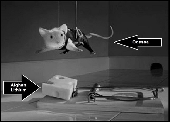 mission-impossible-rat---afghan lithium Odessa 560