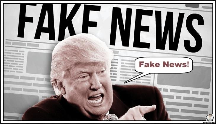 Fake News PALER LARGE