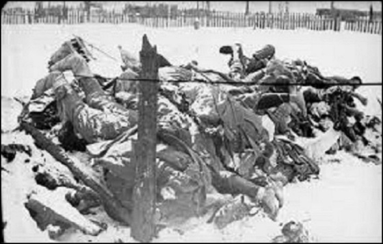 Frozen soldiers, probably German 560