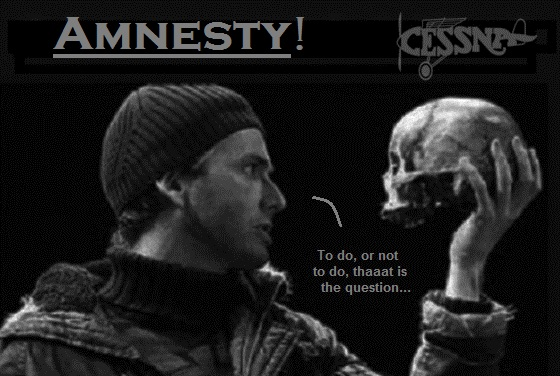 Cessna Skull to do or not to do Amnesty 560