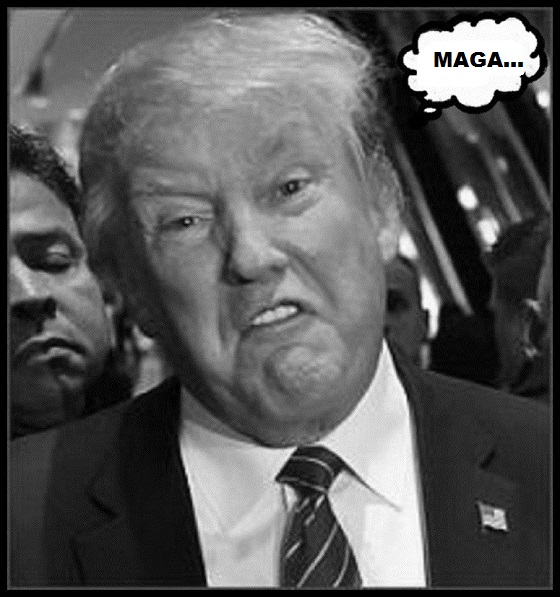 FAKE Toupee Trump MAGA 560