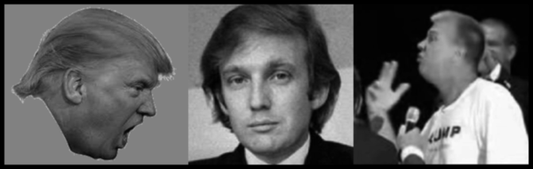 Trump and two fakes 600