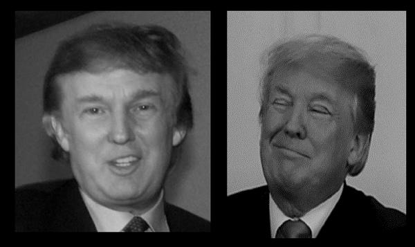 Trump REAL and FAKE 600