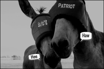 Donkey blindfold horse Patriot Act HEE HAW 600
