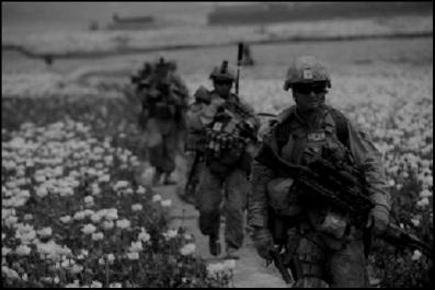Afghan opium darker BW 1000 (2)