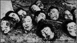 Rape of Nanking heads