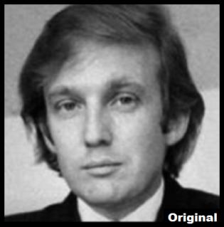 Trump head original SMALLISH