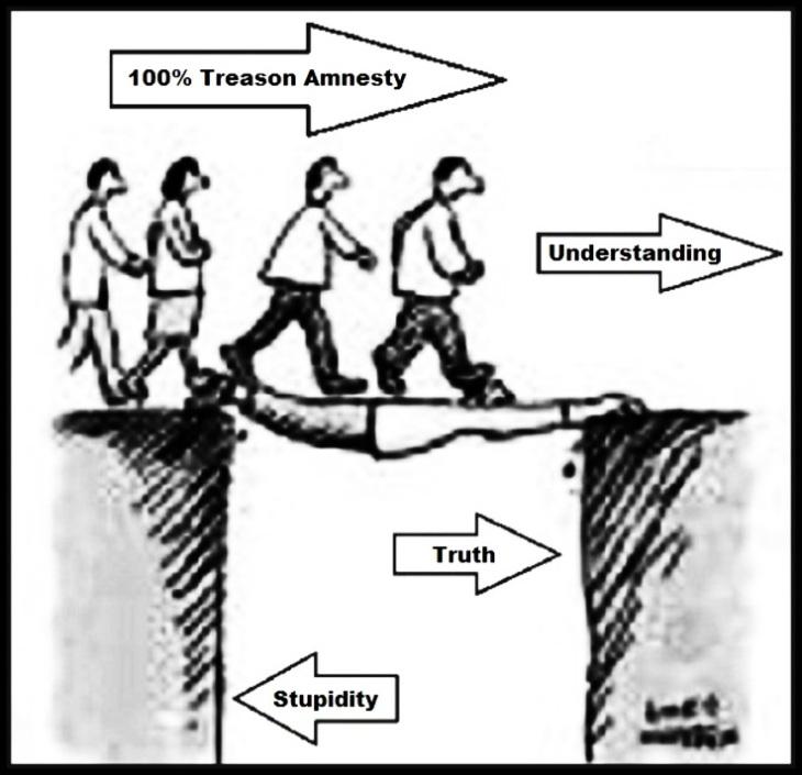 amnesty-understanding-stupidity-treason CLEARER LARGE
