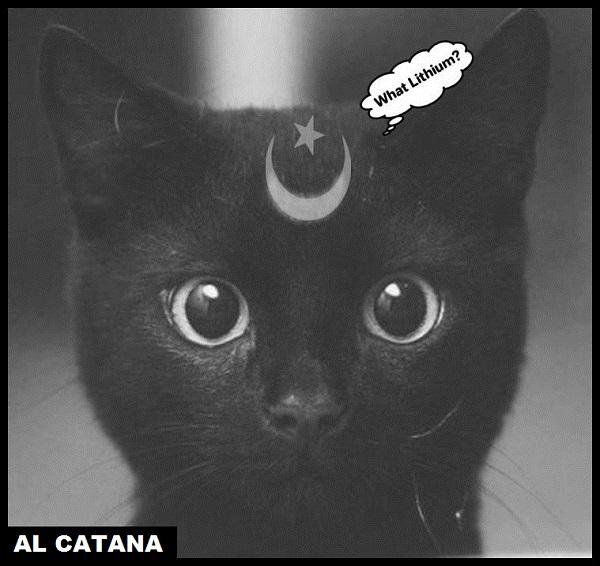 Black cat what Lithium AL CATANA 600