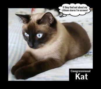 Congressional Kat