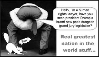 head-up-ass-drumps-pedo-grand-jury-legislation-CAT Meow 600