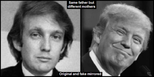 trump-and-fake MIRRORED SANE FATHER DIFFERENT MOTHERS