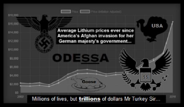 Odessa-USA Turkey Afghan-lithium- goose 600