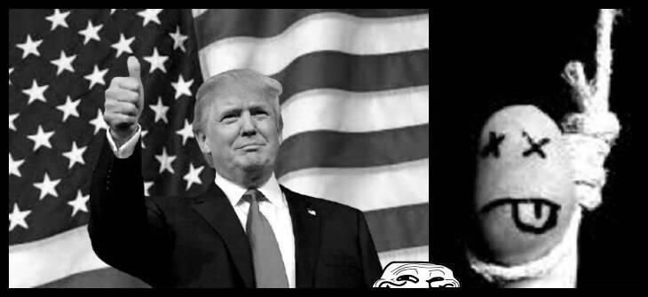 Part American flag Trump hanging thumb GRIN GUY Border 730