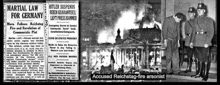 Reichstag fire news clipping comments + accused arsoinist Marianas Van Der Lubbe 730 BORDER10 Crop-Top EDIT LQ
